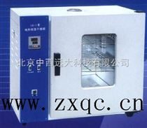 電熱恒溫鼓風干燥箱 型號:BDW1-101-2AB