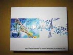 大鼠干细胞因子试剂盒