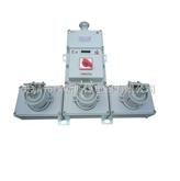 BXS52-2/220移动式防爆电源插座箱