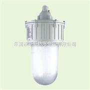 BLE-35冷却塔35W防爆LED防爆照明价格