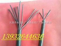 屏蔽高温软电缆-防腐蚀控制电缆ZR-KFFR KFFRP