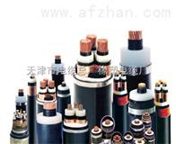 VV23电缆/天津市电缆总厂橡塑电缆厂