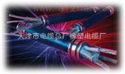 防火電纜NH-KVV(7x2.5 )耐火控制電纜