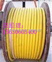 YCP多芯通用橡套电缆,YCP屏蔽控制电缆价格 14*1