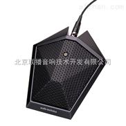 铁三角AT871R电容话筒定制
