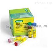 乙型肝炎病毒ccc DNA (HBV-cccDNA)核酸检测试剂盒(PCR-荧光探针法)