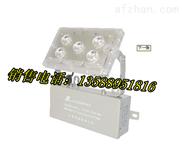 LED应急照明灯ZY8810/ZY8820