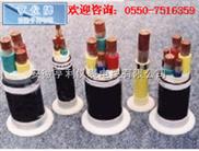 YGVFBP-(YGVFBP变频电缆导体)(莱芜钢铁)(漳州电缆)