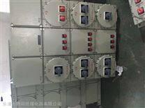 BXM(D)粉尘防爆配电箱DIPA20TA,T6