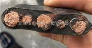 YVFB-行车电缆(扁形电缆)