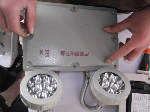 <strong><strong><strong>BAJ52-C20双头防爆应急灯</strong></strong></strong>