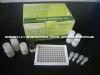 小鼠P糖蛋白/渗透性糖蛋白(P-gp)ELISA Kit