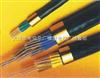 NH-KVVP2屏蔽耐火电缆