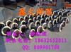 预制夹克管标准规格,聚乙烯夹克管厂家
