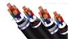 WDZ-YJV32低烟无卤铠装电缆-天缆橡塑电缆厂