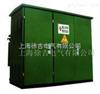 PJZY1-(6)10W2(Ш)带看门狗功能的预付费计量柜